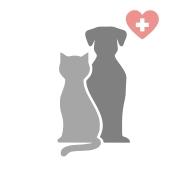 Désinfection clinique vétérianire